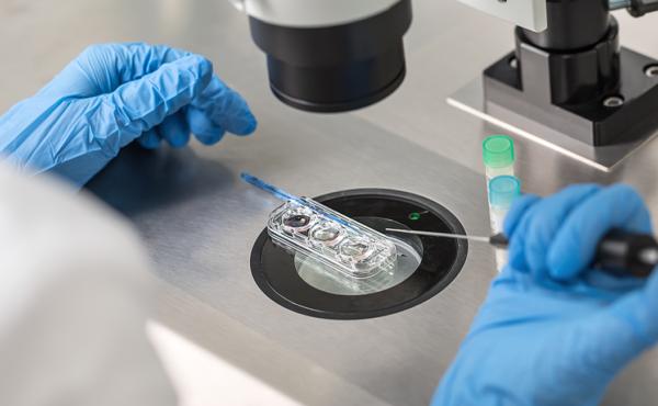 Técnicas avanzadas en embriología de reproducción humana asistida