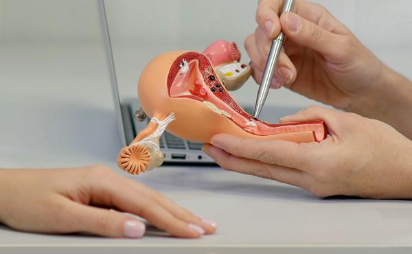 Diplomado en ginecología